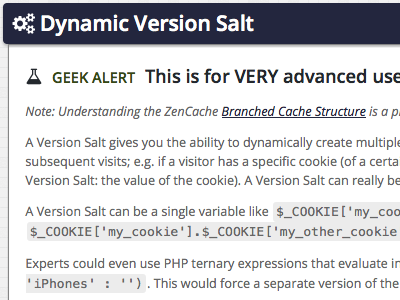Dynamic Version Salt