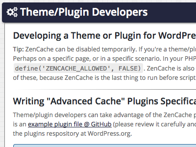 Theme/Plugin Developers
