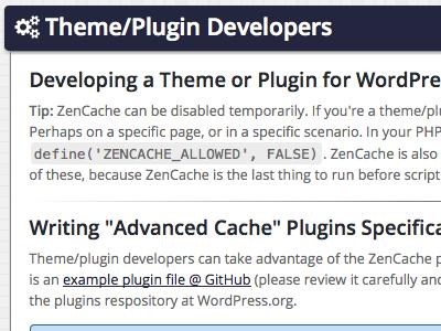 Theme/Plugin Developers