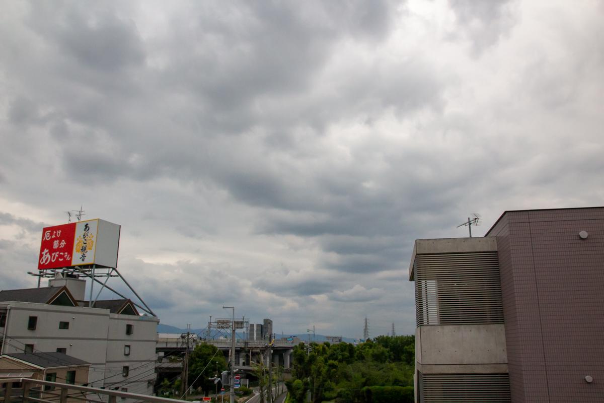 測定条件:曇り