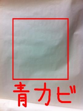 iPhone4青カビ