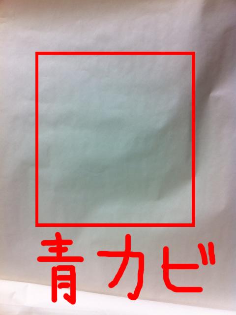 iPhone4 青カビ