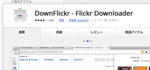 DownFlickr - Flickr Downloader - Chrome ウェブストア