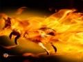 重いFirefoxを高速化する2つの爆速カスタマイズ方法!