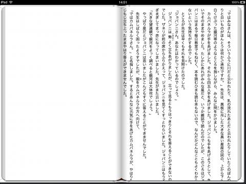 表示の確認03 iBooks - iPad