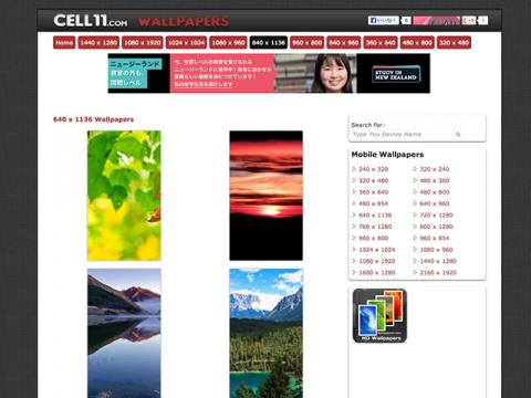 Cell11.com